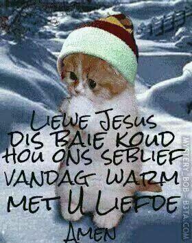 Liewe Jesus dis baie koud ....