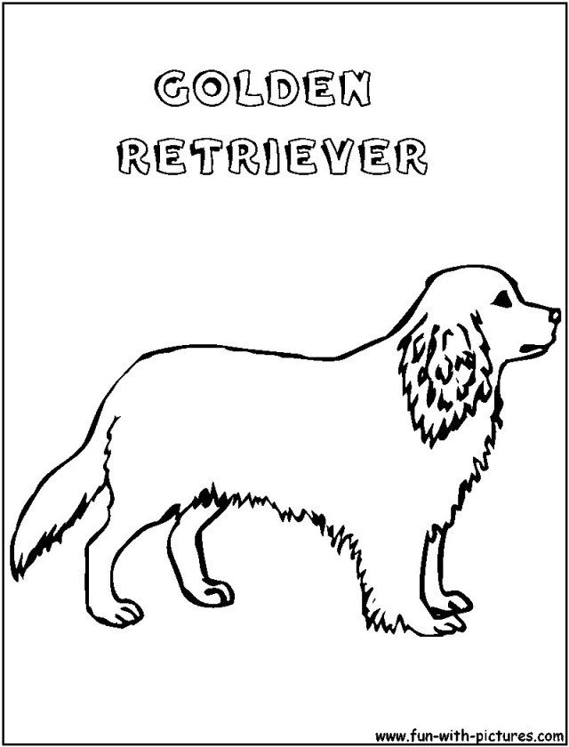 27 Amazing Picture Of Golden Retriever Coloring Page Puppy