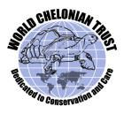 World Chelonian Trust - Differentiating Male and Female African Spurred Tortoises - Geochelone sulcata - Darrell Senneke and Ken Carlsen