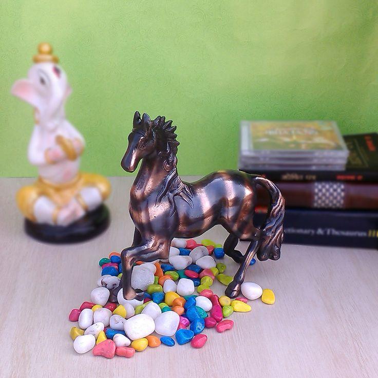 http://www.flipkart.com/craftsmith-metallic-feng-shui-black-horse-figurine-showpiece-25-5-cm/p/itmefzvzhkkr7w4y?p