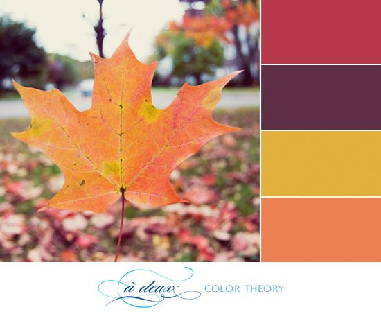 What a vibrant autumn color palette! I love the dark hues mixed with brighter ones. That deep purple is just so regal, don't you think? How would you use this color scheme? No brainer that it's perfect for a wedding, but I'm also thinking it' be great as an interior space make-over! Or maybe I've just been watching too much HGTVrecently… Anyway, happy fall!