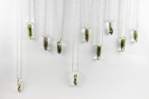 Moss Specimen Necklace Botanical Jewelry by MossoftheWoods