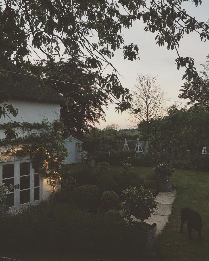 "611 aprecieri, 19 comentarii - Cottage life (@cowparsley_and_foxgloves) pe Instagram: ""Fairy lights and sunset#tonight #summer #evening #june #love"""