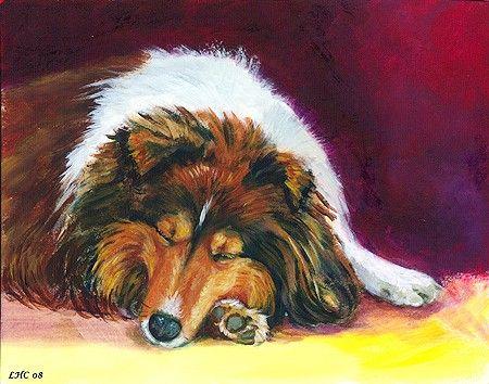 Shetland Sheepdog Sheltie Giclee Fine Art Print size 8x10 on Somerset Velvet Paper