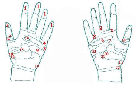 Points d'acupuncture intérieur des mains
