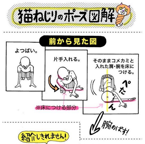 20秒でスッキリ!頑固な肩こりと腰痛は、「ネコひねりのポーズ」で解消しよう - Spotlight (スポットライト)