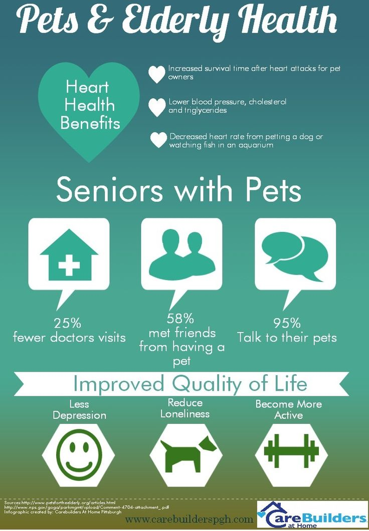 pets the many effects they have But our pets are constantly lounging and playing in conditions  many patients  develop between a week and a month after they're bitten  it's a fatal side effect  that causes the animal's kidney to fail, and researchers have a.