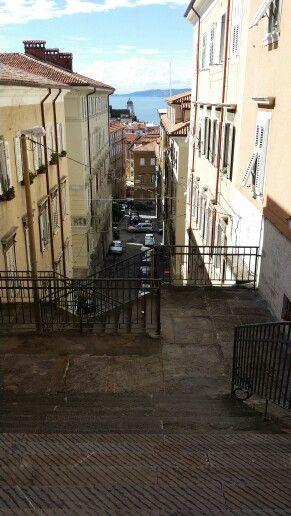 Trieste, Via Ciamician