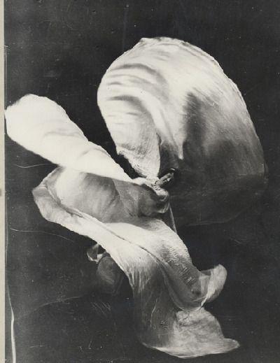 Loie Fuller, c.1890s-1910s - retronaut.com