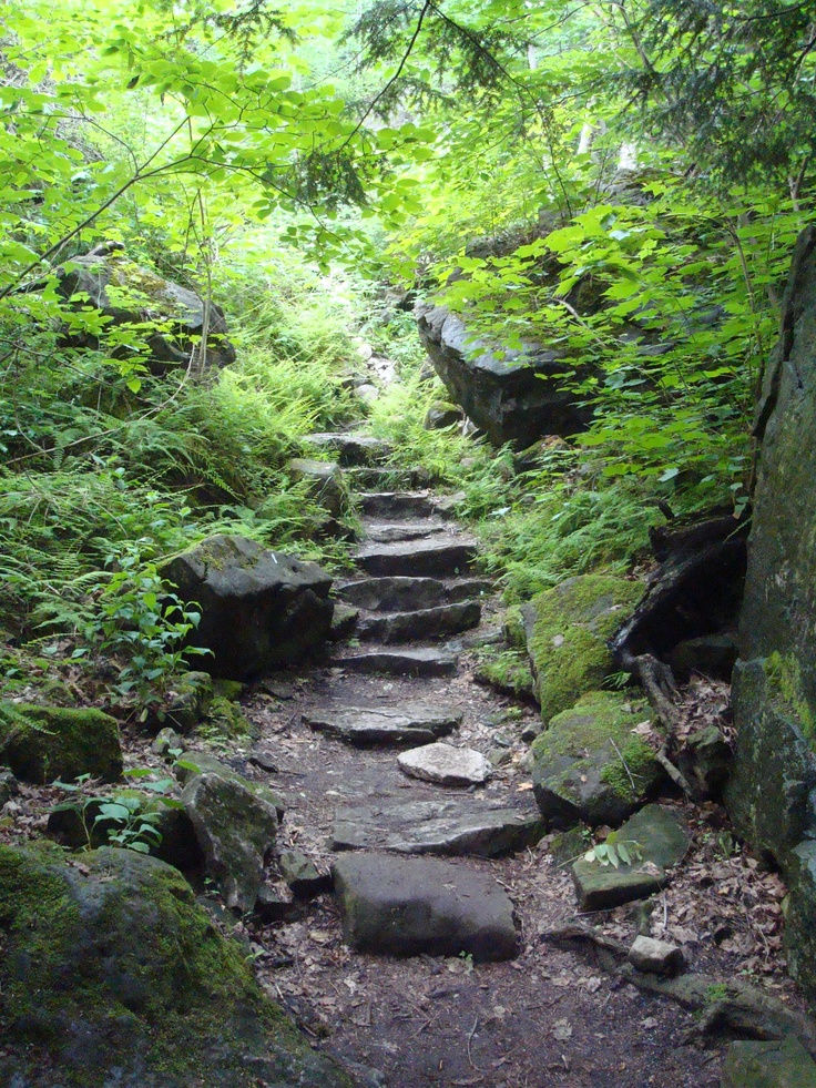 Steps in the Niagara Gorge