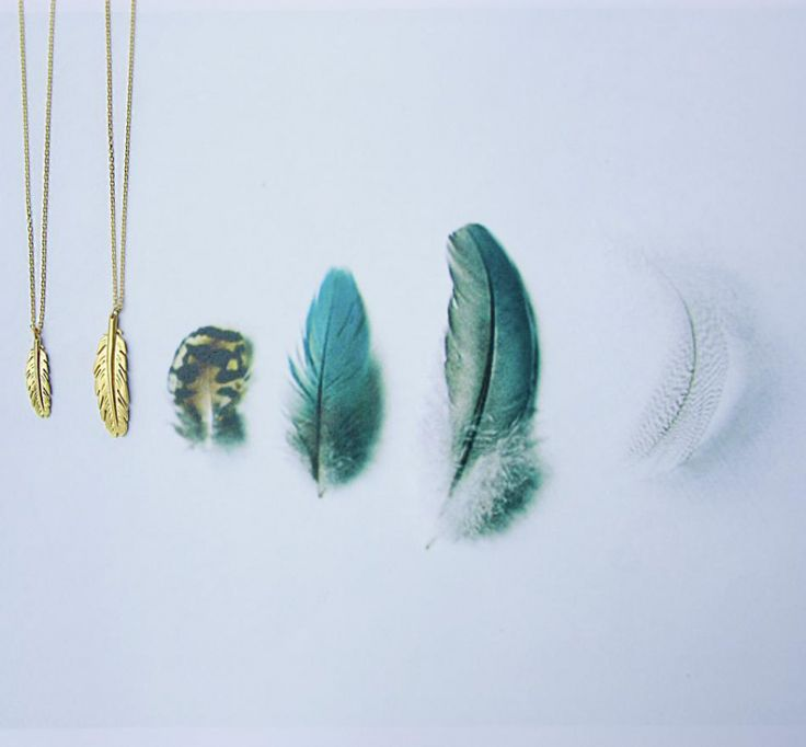 going native with a range of beautiful feathers
