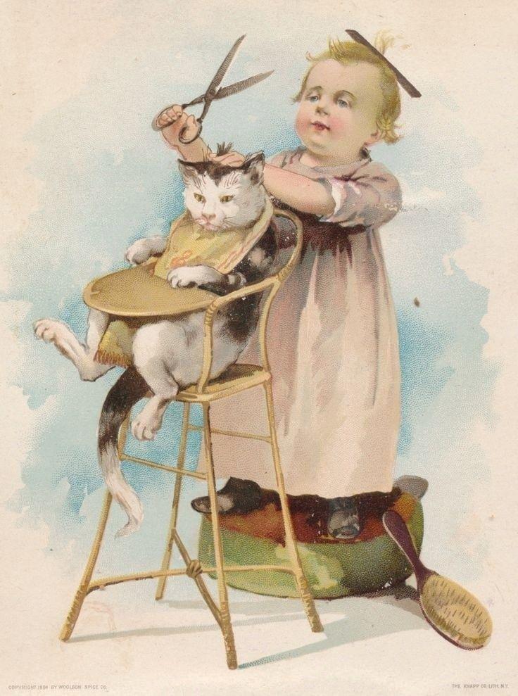 обнаружил собой кошки на старинных открытках данном посте
