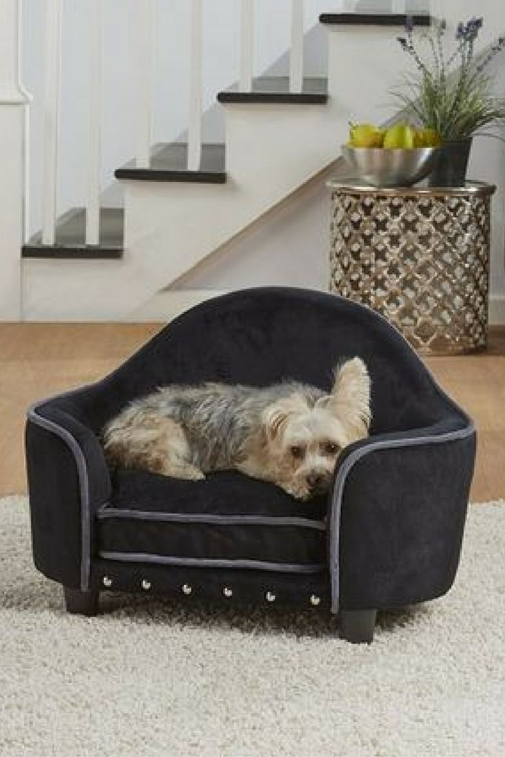 Comfy And Cozy Small Dog Sofa Bed From Encd Home Pet