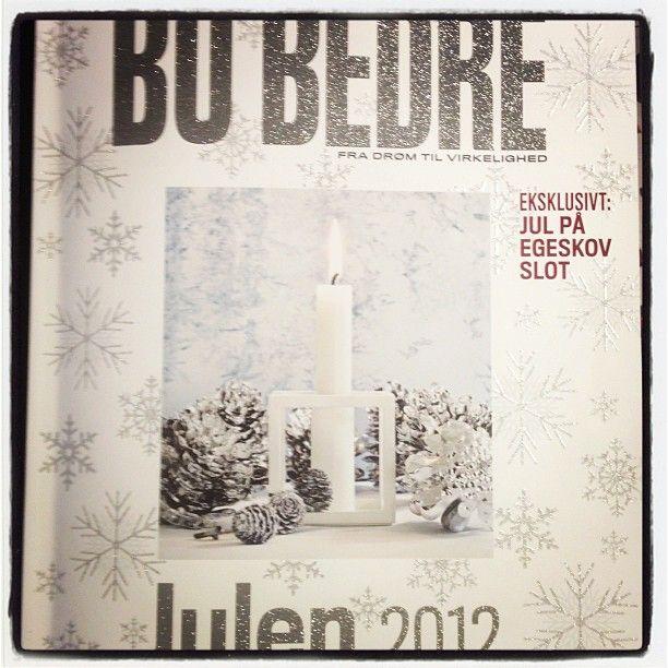 Cover from Bo Bedre