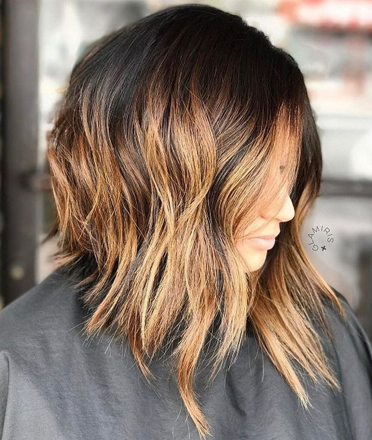 hair styles for asian best 25 shaggy bob hairstyles ideas on shaggy 2498