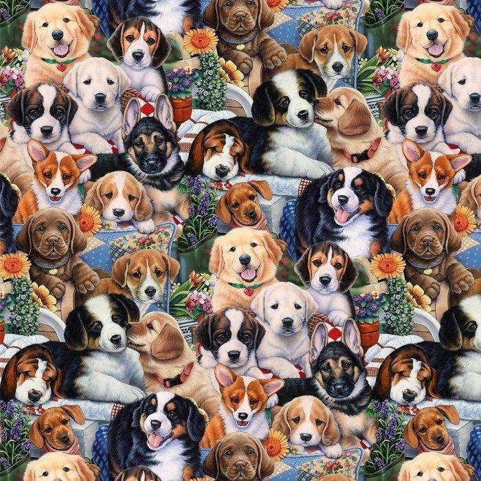 Dog Fabric By Half Yard Puppy Fabric Printed Quilting Cotton Dog Quilting Fabric Dog Sewing Fabric Kids Fabric Garden Dog Art Dog Paintings Cute Animals
