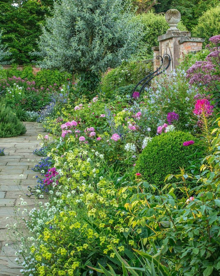 This Iconic Long Shot Of The South Garden Borders Shows How We Build Up The Pastel Colour Scheme With A Wealth Of Annuals Perennials And Roses Nicotiana Alata Uzun Yasayan Bitkiler