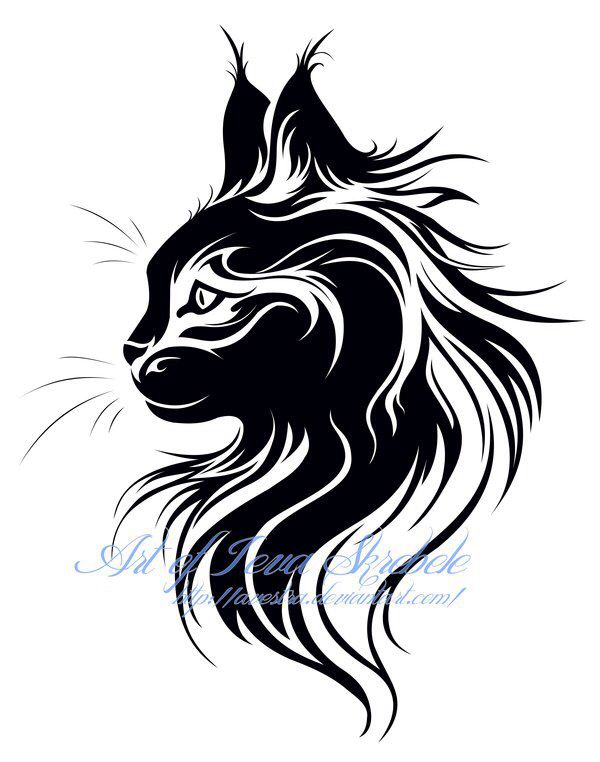 maine coon cattoo tattoos pinterest maine coon and maine. Black Bedroom Furniture Sets. Home Design Ideas