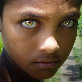 The Most Beautiful Natural Eye colors Ever Tibba Fotos