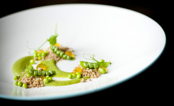 How to make vegetarian dishes around pea based on Foodpairing? Use the Foodpairing tree and find combinations with apricot and passion fruit, coffee and peas