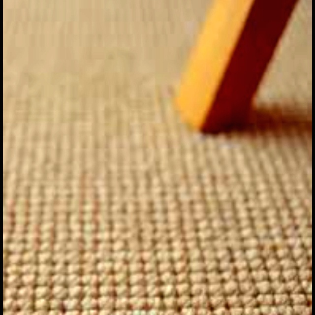 Textured carpet idea for dowstairs bedroom