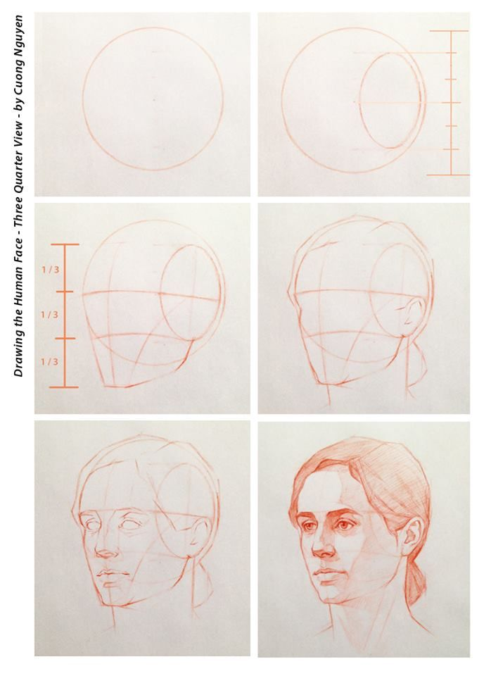 Drawing the human face - Three quarter view - by Cuong Nguyen