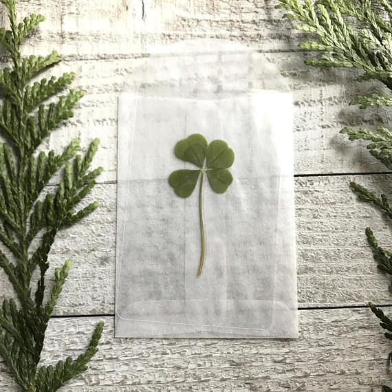 This wallet card is handcrafted featuring a genuine five leaf clover. The five leaf clover was handpicked and pressed for at least two months, then sealed in a high quality, sturdy laminate paper.  SPECIFICATIONS: ✥ Wallet card measures 2.32 x 3.70 inches. ✥ This pressed clover is