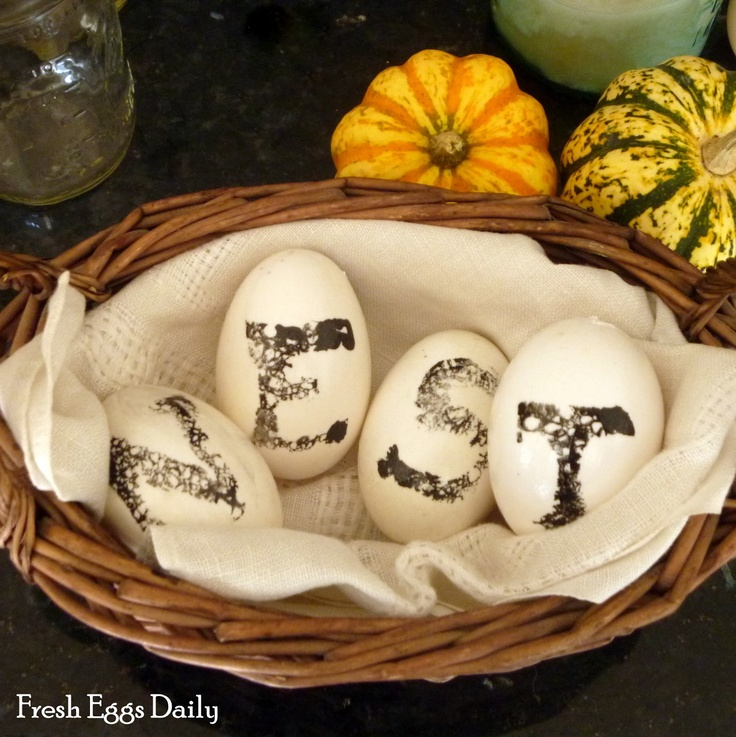 1000+ images about Beautiful Eggs on Pinterest | Chicken eggs ...