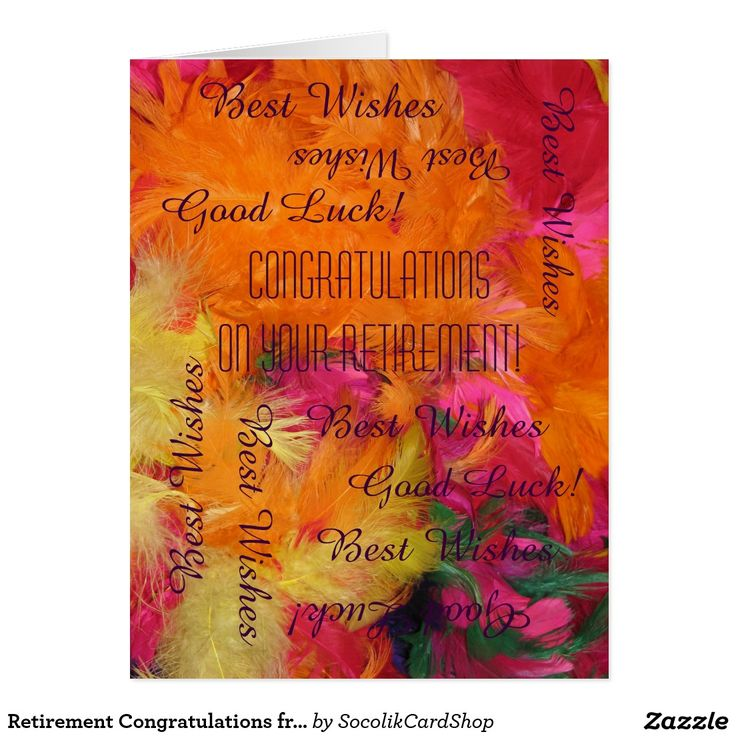 Retirement Congratulations from All of Us, JUMBO Card - This fun jumbo card is decorated with our original photograph of colorful orange, hot pink, and yellow feathers. Easy to modify inside/outside text, if desired. Default size is JUMBO, to leave room for lots of co-workers to sign. It's easy to change to standard size, if desired. Modern, elegant, and fun! All Rights Reserved © 2015 Marcia Socolik.