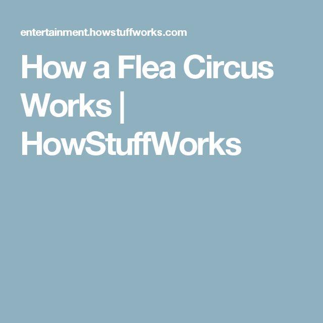 How a Flea Circus Works | HowStuffWorks