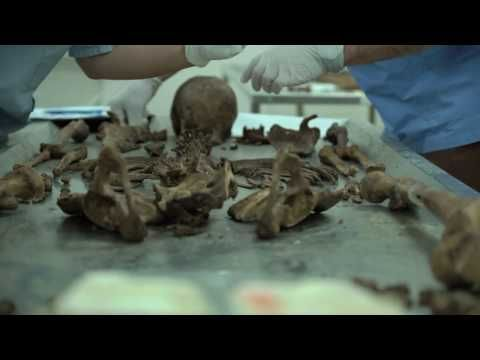 Institute of Forensic Medicine - YouTube
