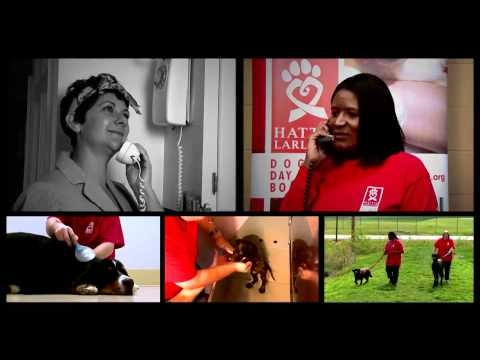 When work keeps you late or a vacation takes you out of town, make a day care or overnight boarding reservation for your dog at Hattie's Doggie Day Care & Boarding. Hattie's Doggie Day Care & Boarding has indoor and outdoor play areas, air conditioning and individual suites for your dog. The program offers day care, overnight boarding and grooming services and is a vocational program for adults with disabilities. Learn more: http://www.hattielarlham.org/v/doggie-day-care-cleveland.asp