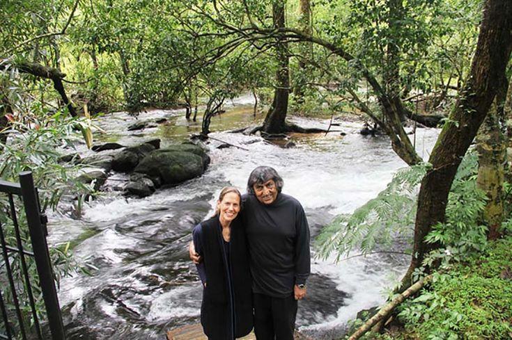 Пара занималась 26 лет тем, что пересаживала тропические леса, и вот что из этого вышло. — Vinegret