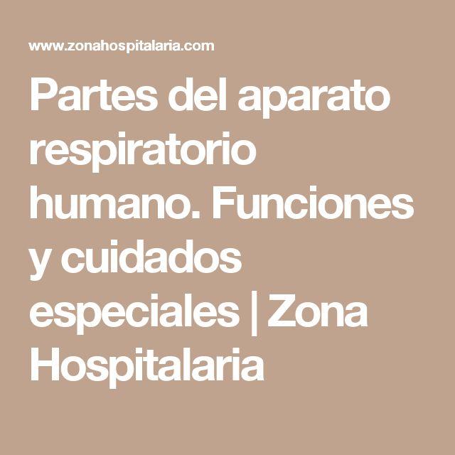 Partes del aparato respiratorio humano. Funciones y cuidados especiales | Zona Hospitalaria