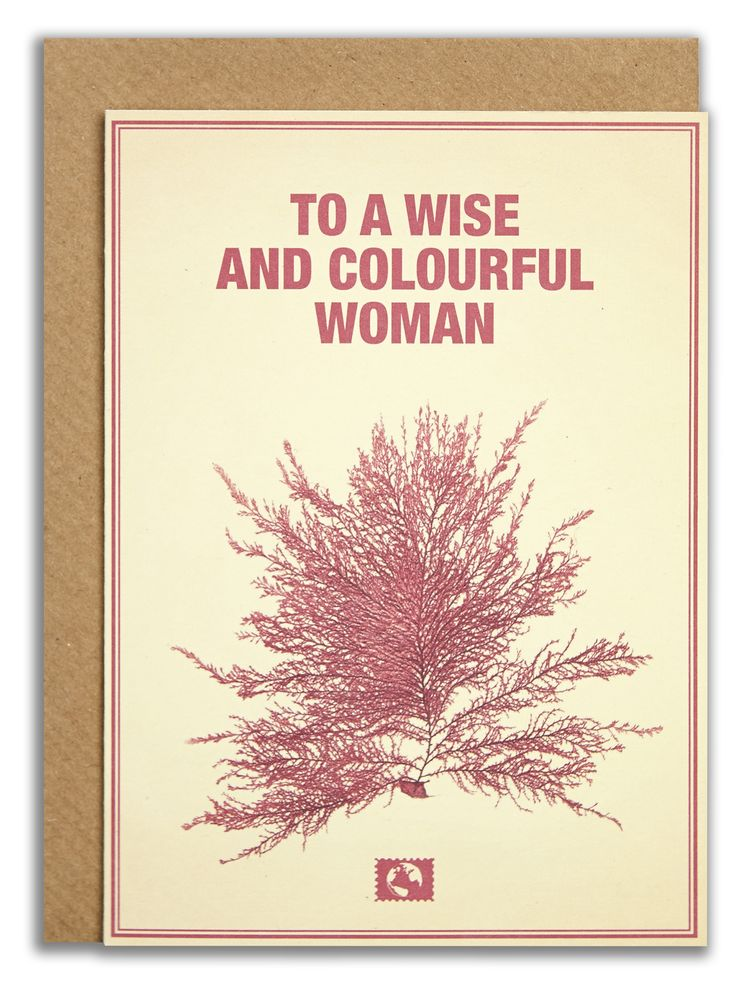 """To a wise and colourful woman"". #messageearth #sustainable #greetingcards #sustainability #eco #design #ecodesign #vintage #cards #peculiar"