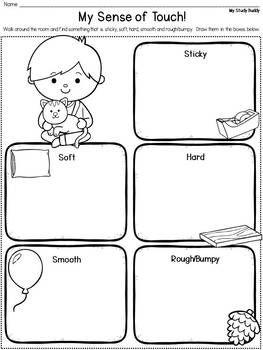 Five Senses Activities Five Senses Kindergarten Five