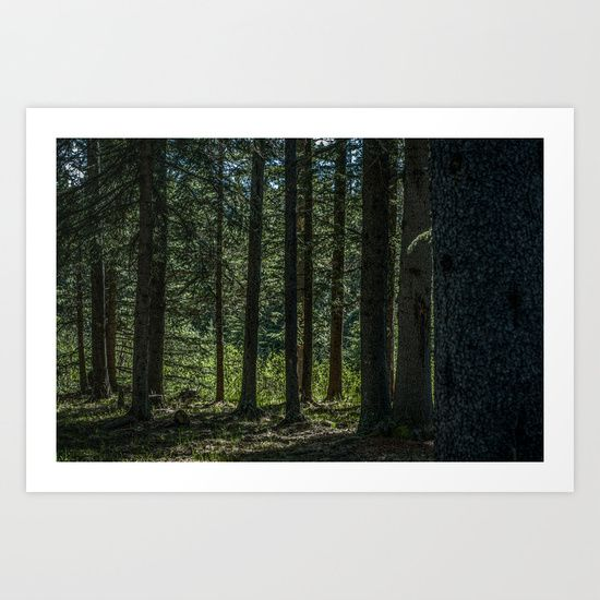 Buy Silent Forest II by MAJA as a high quality Art Print. Worldwide shipping available at Society6.com. Just one of millions of products available.