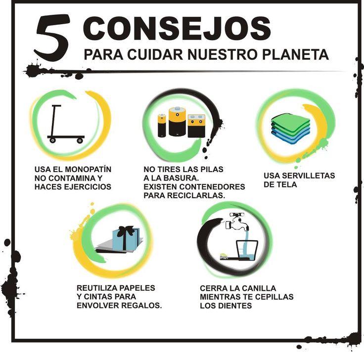 Infografia 5 consejos para cuidar nuestro planeta medio - Como cuidar las hortensias de exterior ...