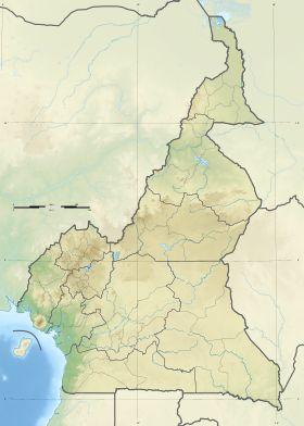 Voir la carte topographique duCameroun