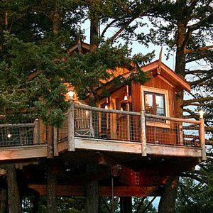 Weekend tree house