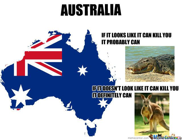 straya meme center the great land of oz pinterest to be dundee and crocodile dundee. Black Bedroom Furniture Sets. Home Design Ideas