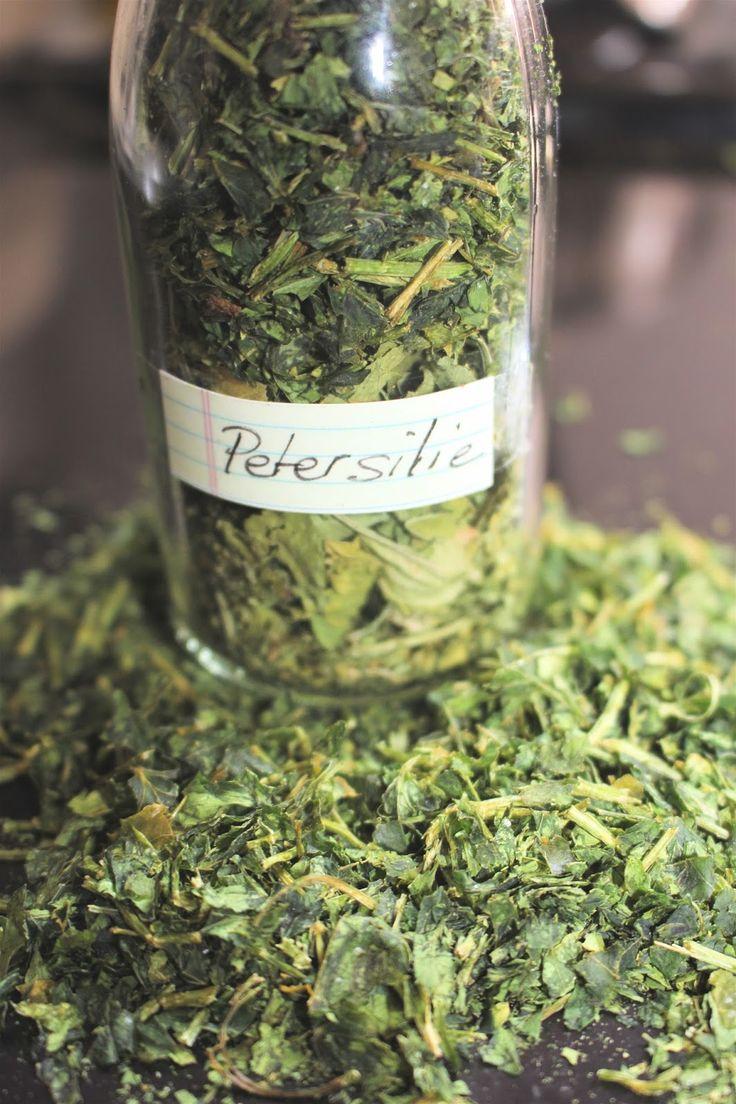 die besten petersilie pflanzen-ideen auf pinterest, Gartengerate ideen