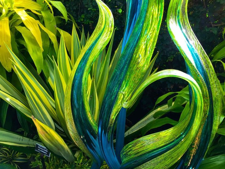 1710 Best Art Glass Images On Pinterest Dale Chihuly Glass Art And Glass Garden