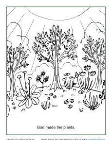 god made the plants coloring page sunday school