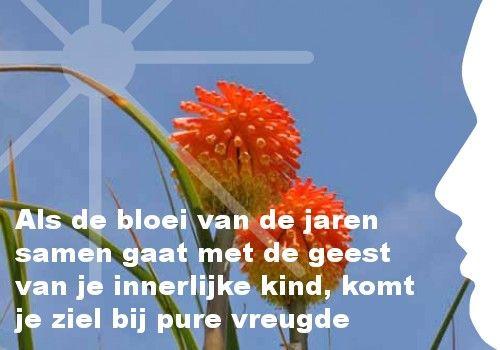 Mijn inspiratie: Als de bloei van de jaren samen gaat met de geest van je innerlijke kind, komt je ziel bij pure vreugde