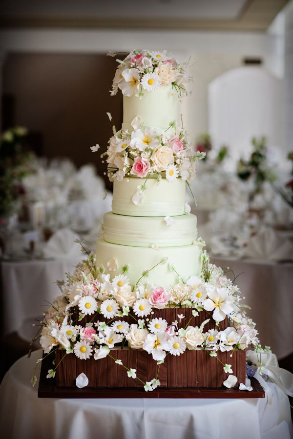 A stunning seven tier cake with gorgeous sugar flower detail #BlinkPhotography