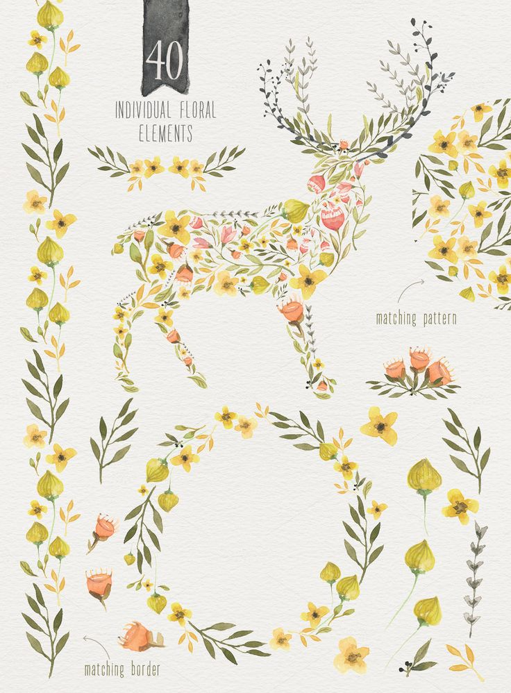 Woodlands Watercolor megapack by Lisa Glanz on Creative Market