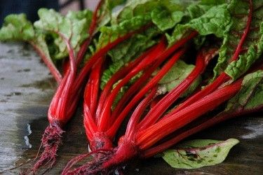 Swiss chard and tomatoes with garlic sautéed in olive oil