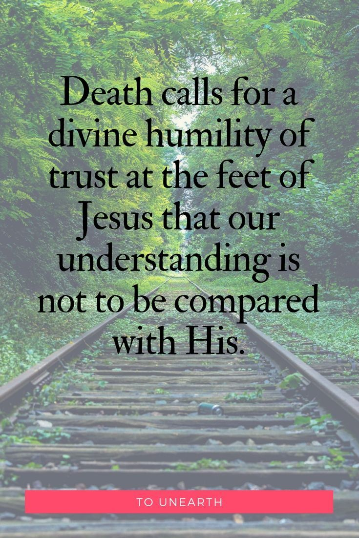 Are you ready to trust Jesus? Finding humility | God's ways are not our ways | Trust at the feet of Jesus #tounearth #deathvslife #followerofjesus #trustinjesus