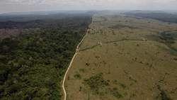 La déforestation de l'Amazonie en hausse ! Un désastre !